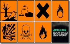 Bahan-Bahan Kimia Berbahaya