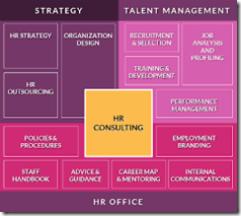 HR CONSULTING SKILLS