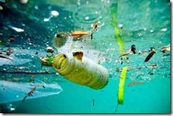 Water Pollutan